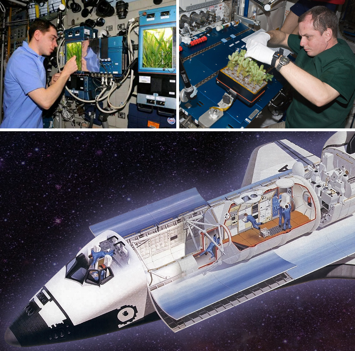Experiments on the Space Shuttle were conducted in Spacelab.